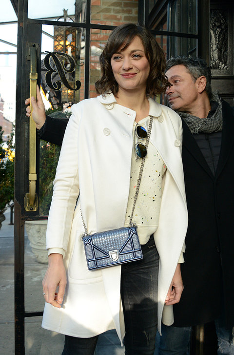 marion-cotillard-dior-it-bag-campaign